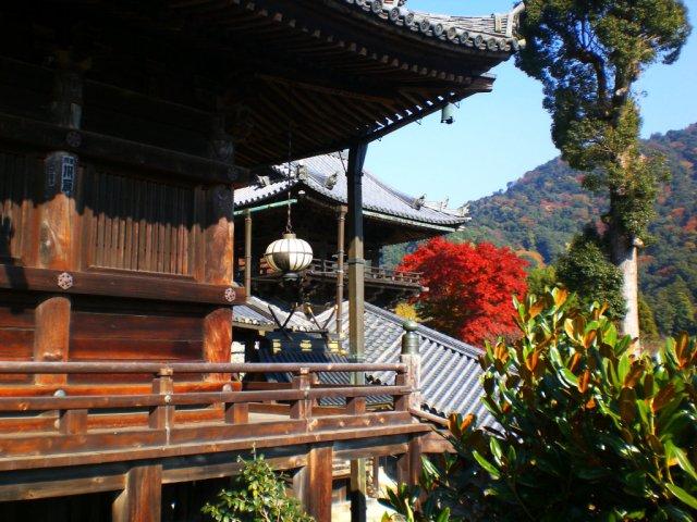 Views from the Hasedera Hondo