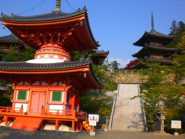 The pagodas in Tsubosaka temple