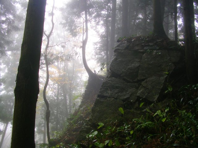 Takatori Castle in the mist