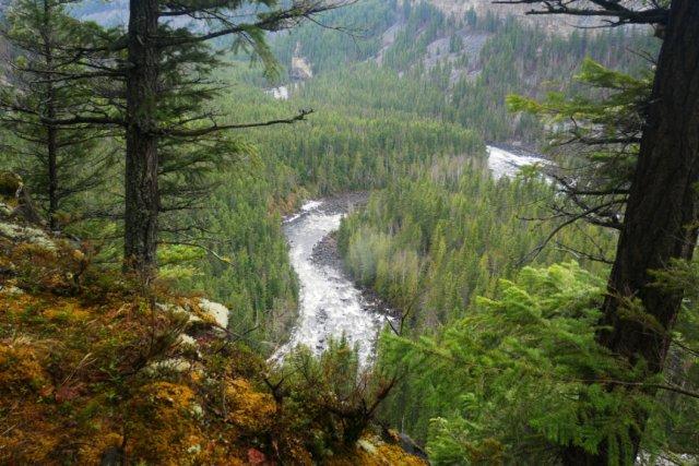 Murtle river from Helmcken Rim Trail