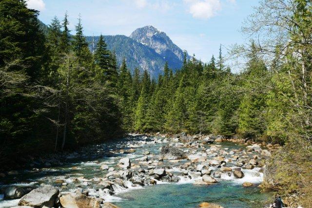 Crossing Gold Creek
