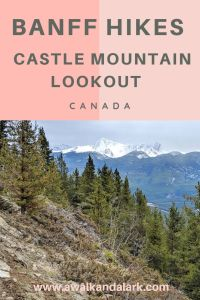 Banff Hikes - Castle Mountain Lookout