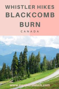 Blackcomb Burn - Amazing workout hike in Whistler, Canada