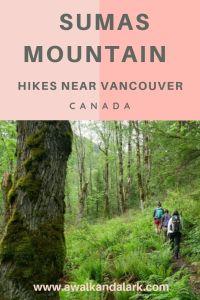 Sumas Mountain Trail - Hikes near Vancouver, Canada
