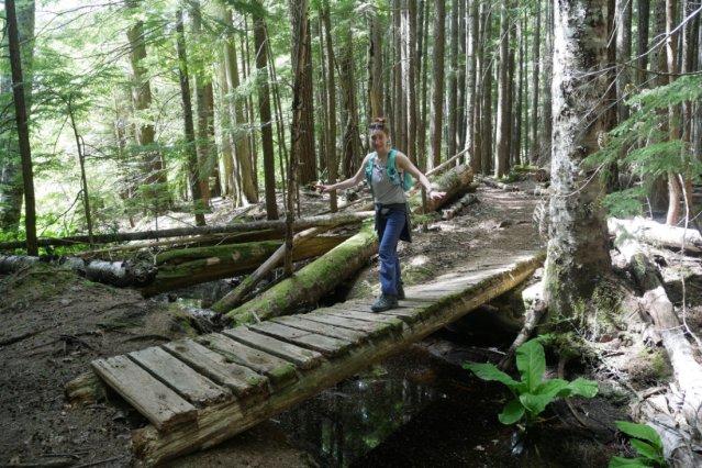Ghetto bridges on the Lave Lake trail