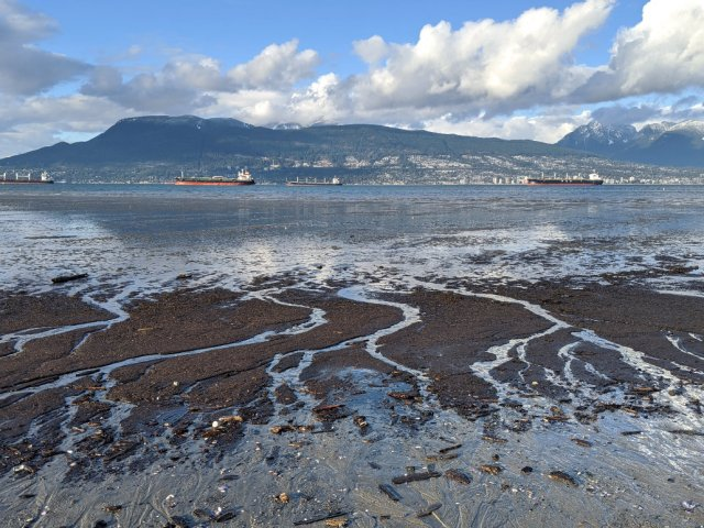 Locarno Beach looking out to the Burrard Inlet