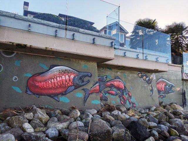 Rocky beach below Point Grey Road salmon beach art