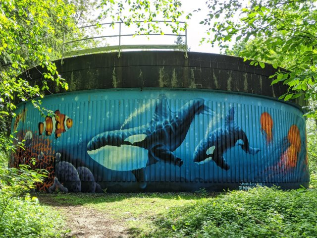 Cool artwork on Burnaby Mountain