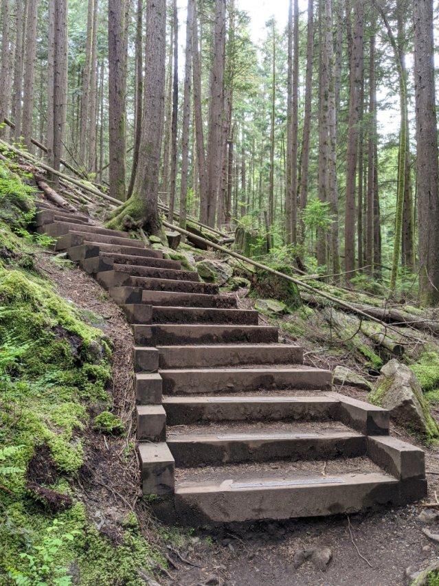 Jug island trail steps