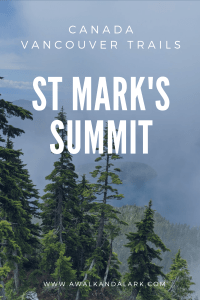St Mark's summit - gorgeous, even on rainy days
