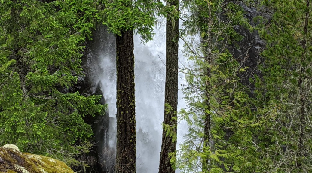 High Falls gushing through the trees