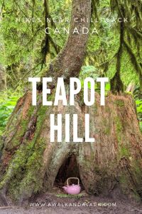 One of the best family walks near Chilliwack and Vancouver - Teapot Hill