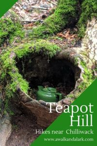 Teapot Hill a fab teapot-filled walk near Chilliwack and Vancouver - Canada