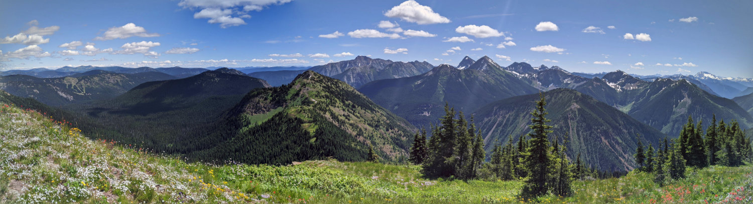 Snow Camp Mountain and the Skyline Trail from Lone Goat Mountain