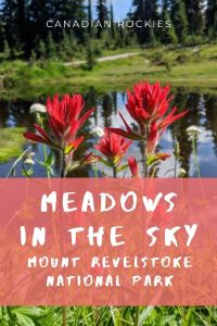 Meadows in the Sky to Miller Lake and Eva Lake - Mount Revelstoke, Canada
