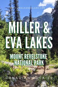 Miller and Eva Lake hike in Mount Revelstoke National Park, Canada