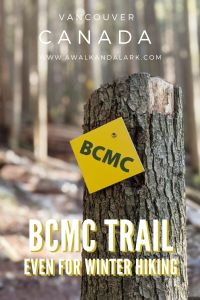 BCMC trail - you can still hike up Grouse Mountain when the Grouse Grind is closed