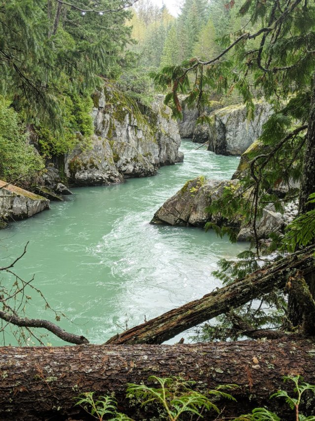 Cheakamus River views