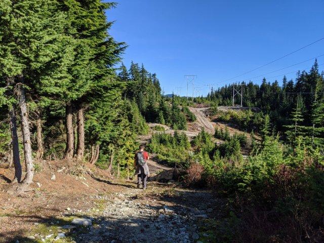Upper Powerline trail