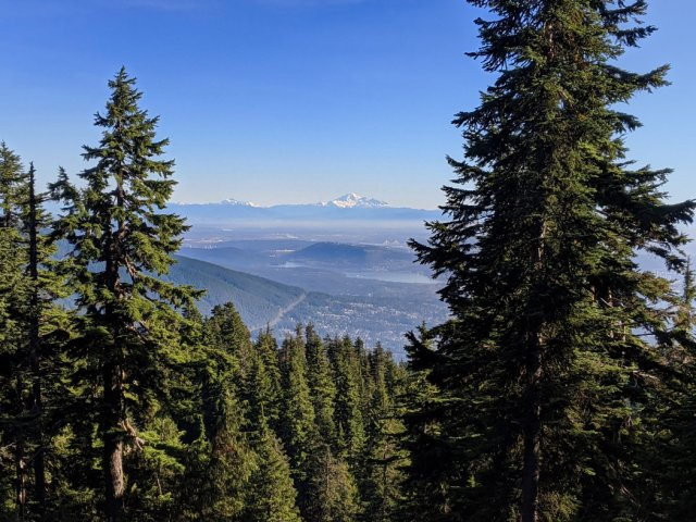 Views through the trees down to Vancouver and Mt Baker
