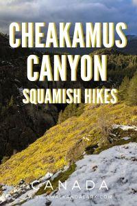Cheakamus Canyon - Family friendly walk near Squamish, Canada