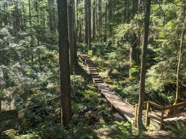 Baden Powell Trail