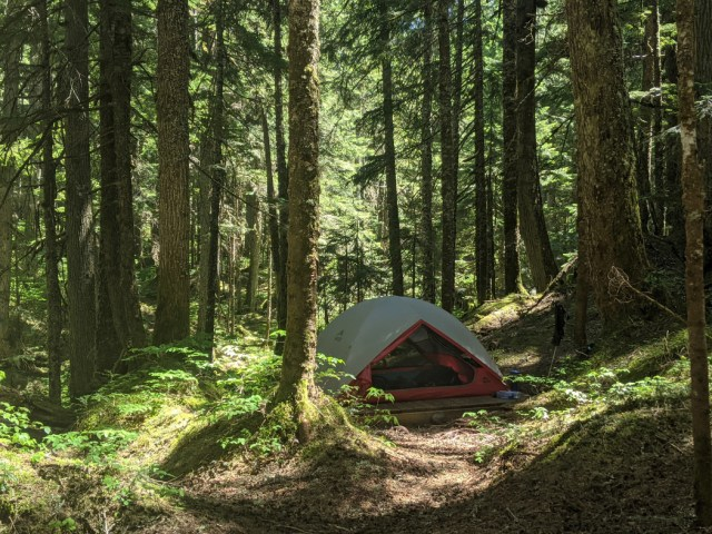 Camping at covile Campground