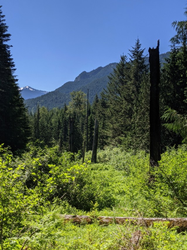 First open view along the trail