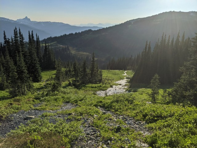 Golden hour in the meadows below Russet Lake