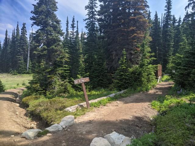 Bear Cache at Helm Creek