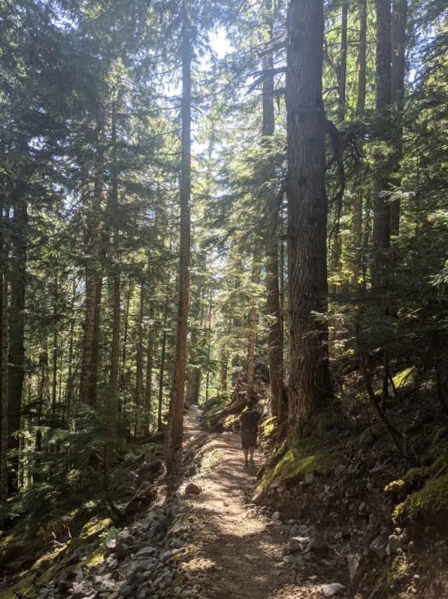 Helm Creek trail up