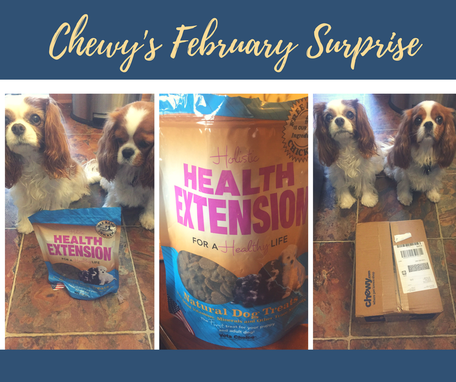 Chewys February surprise
