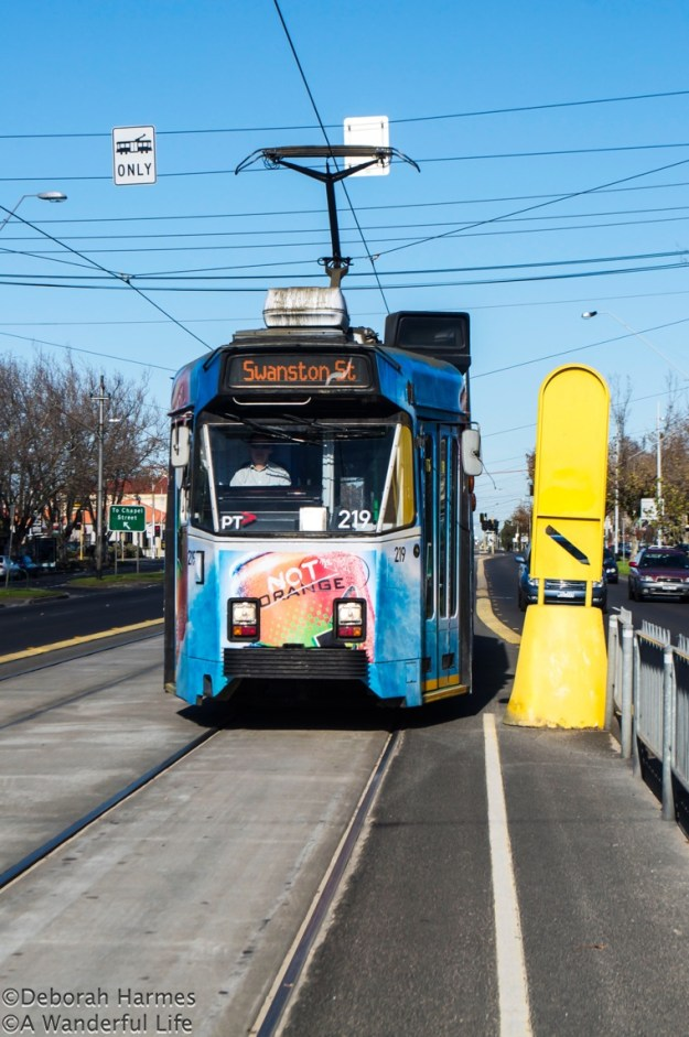 Blue tram travelling down St. Kilda Road