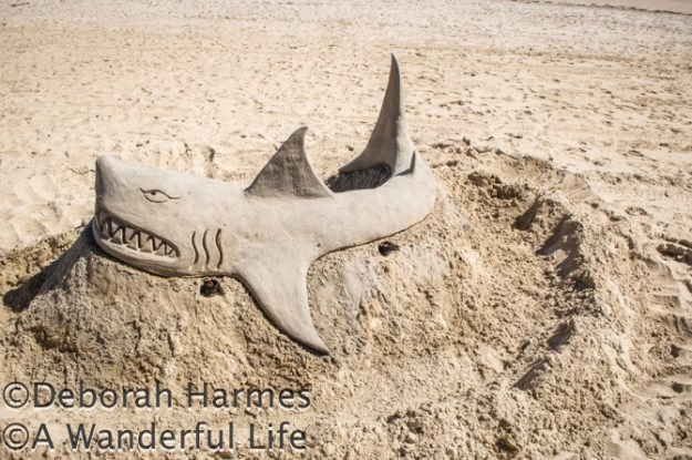 Sand sculpture of a shark at St. Kilda beach in Melbourne, Australia