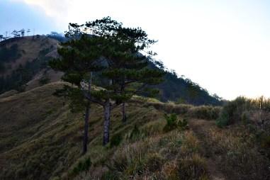 MT. UGO NUEVA VIZCAYA
