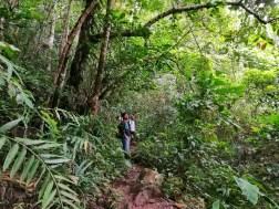 MT. MANABU: Travel Guide + Itinerary