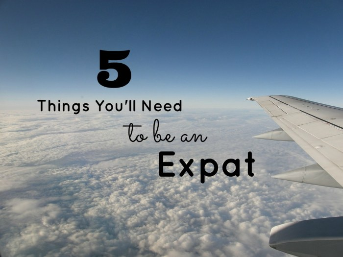 5 Things Expat Title