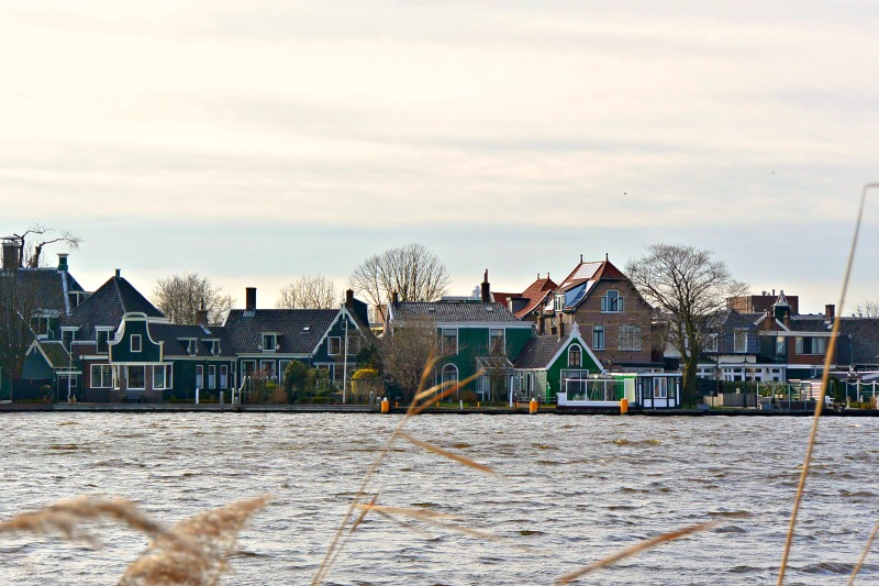 Houses across the water