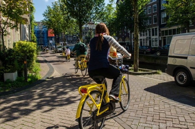 Rented bikes in Amsterdam