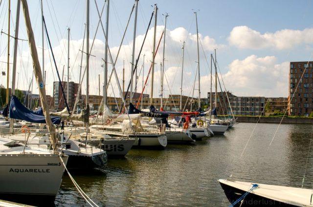 Amsterdam Sail Boats