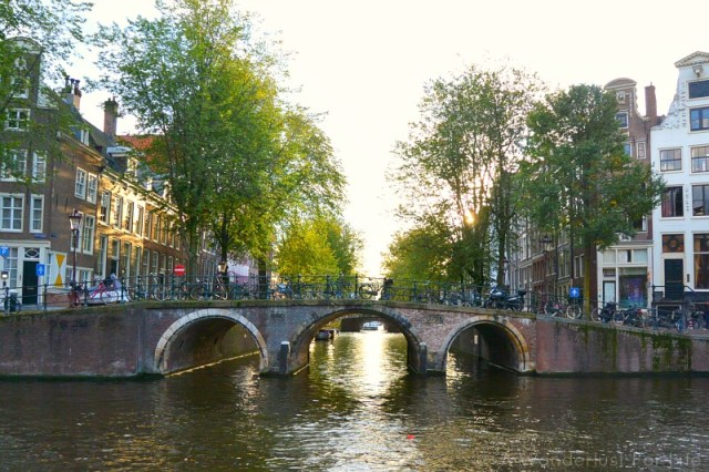 Picnic on Herengracht