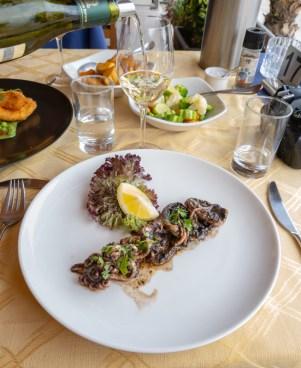 Cuttlefish -- Tmun Mgarr, Gozo, Malta