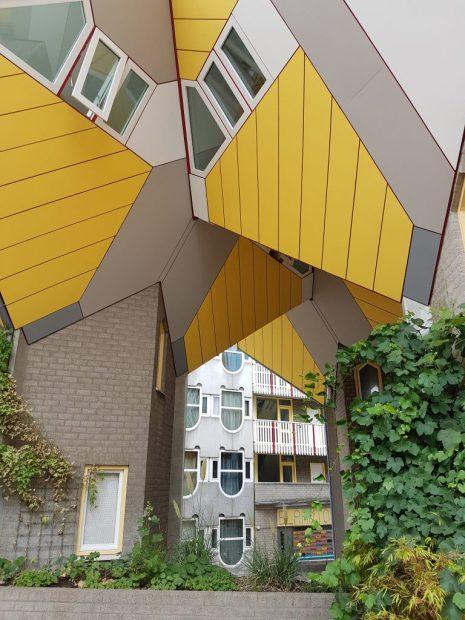 Rotterdam houses