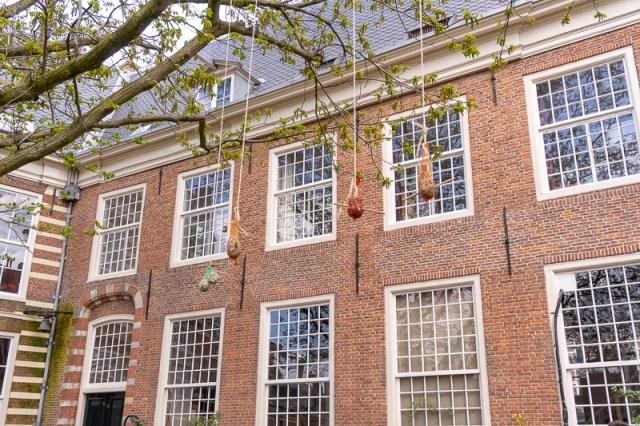 Birdfeeders in Haarlem