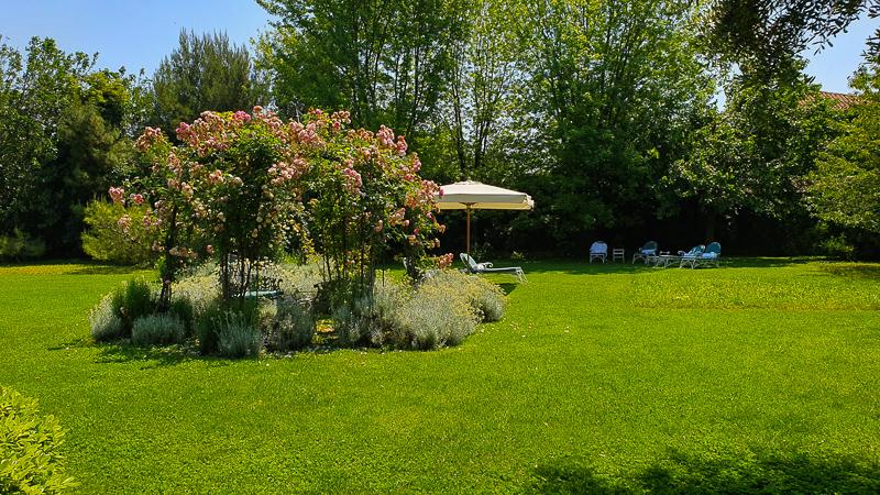 Gardens on Giudecca