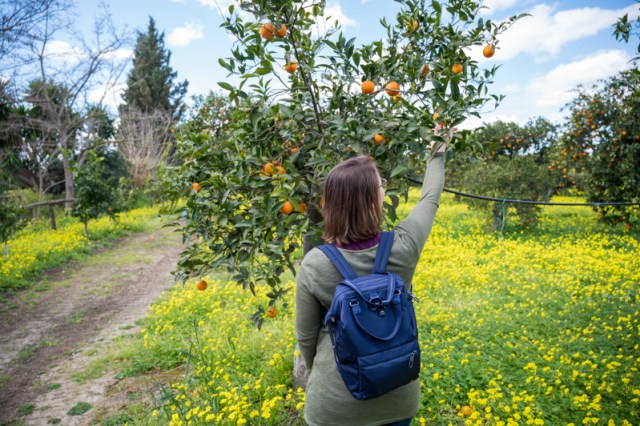Pacsafe Citysafe mini backpack Italy orange grove
