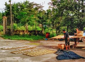 Dai Women sun drying Banna in Man Dong Village (曼东 - Man Dong). Mengla County