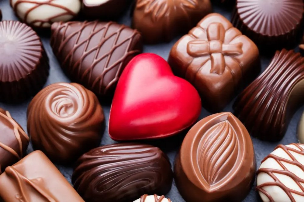 Image result for chocolate day international