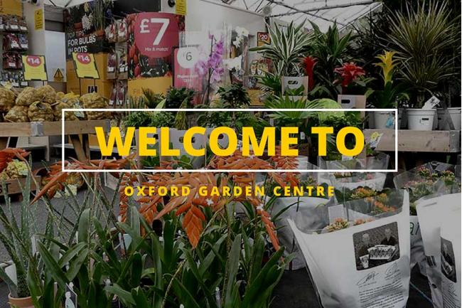 Oxford Planters Price List