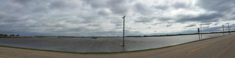 Flooded Farmland in Southern Manitoba